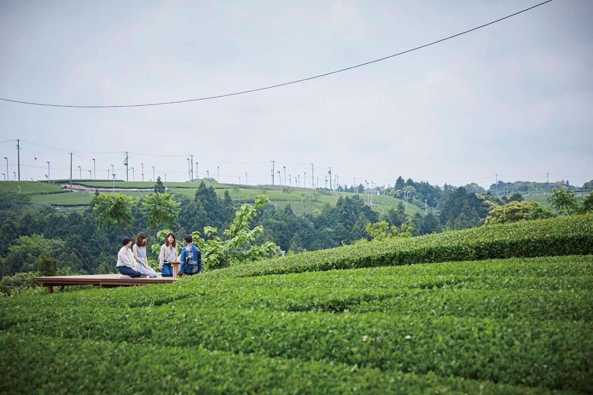 大地の茶の間、釜炒り茶 柴本、牧之原市