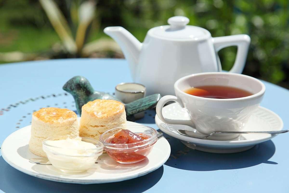 静岡、パンタリタ、紅茶