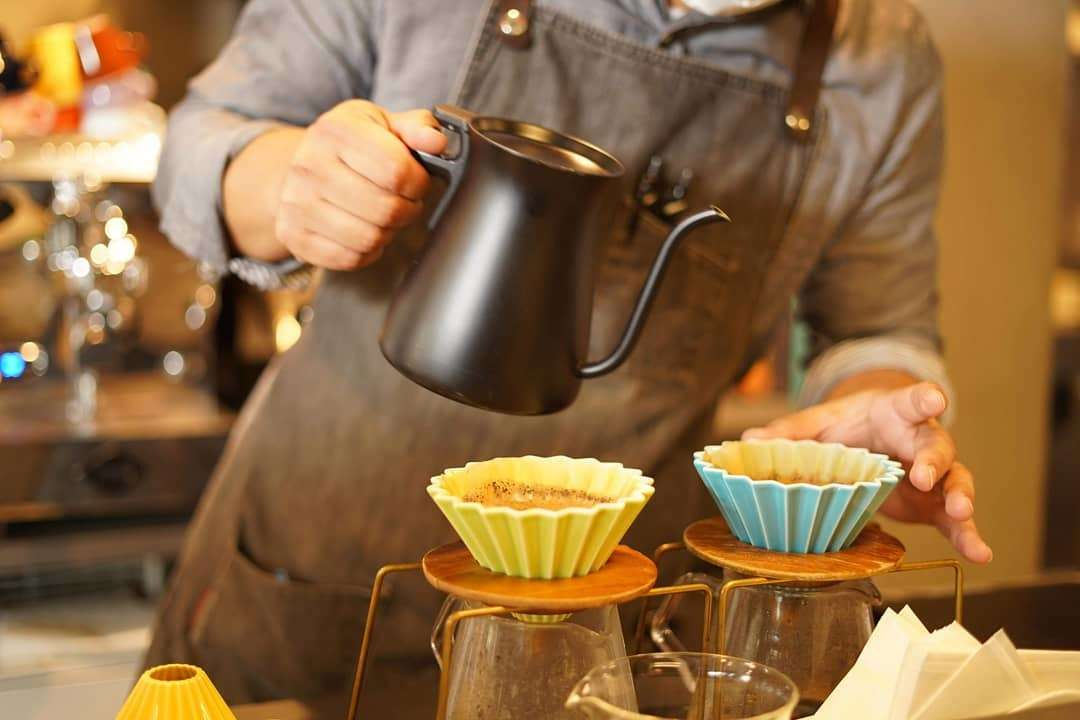 藤枝、ロッコ、コーヒー