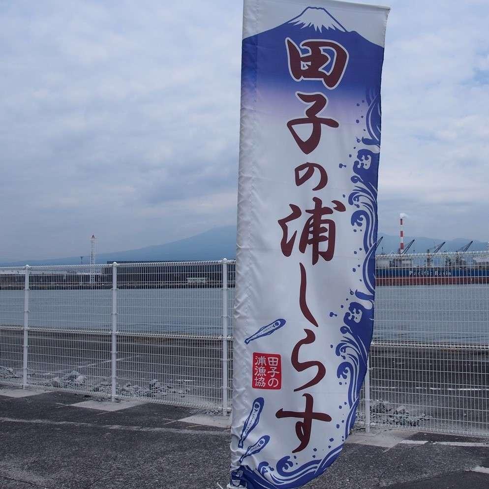 田子の浦港 漁協食堂、富士、のぼり旗