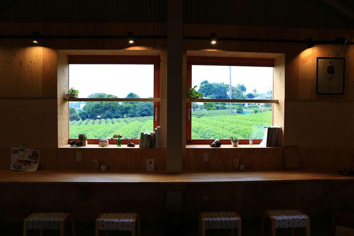 富士、ゆほびカフェ、茶畑