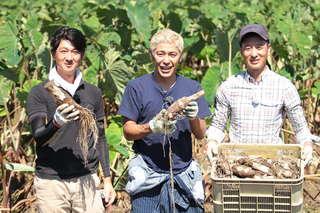 生産量日本一の「海老芋」