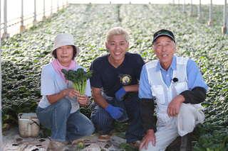 出荷量日本一の「タアサイ」