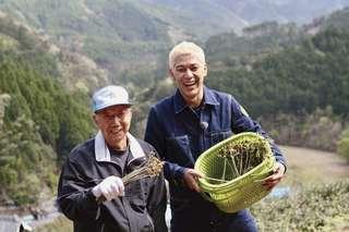 静岡の春を味わう「山菜狩り」