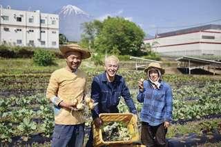 富士山の恵み、初夏の「有機野菜」