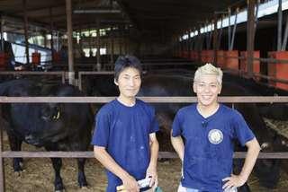掛川の新ブランド「掛川牛」