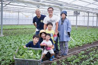 静岡だけで作られるスーパーフード「クックケール」