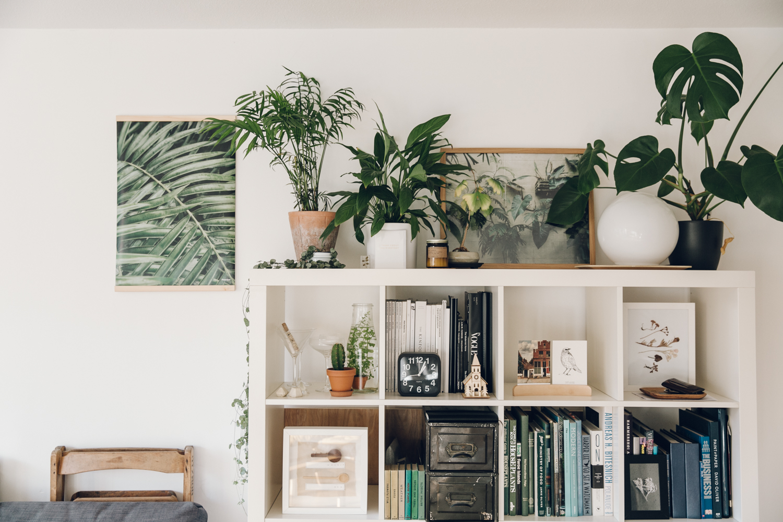 Haarkon+Light+Shadow+Wall+Bed+Home+Interior+House+Shelf+Shelfie+Books