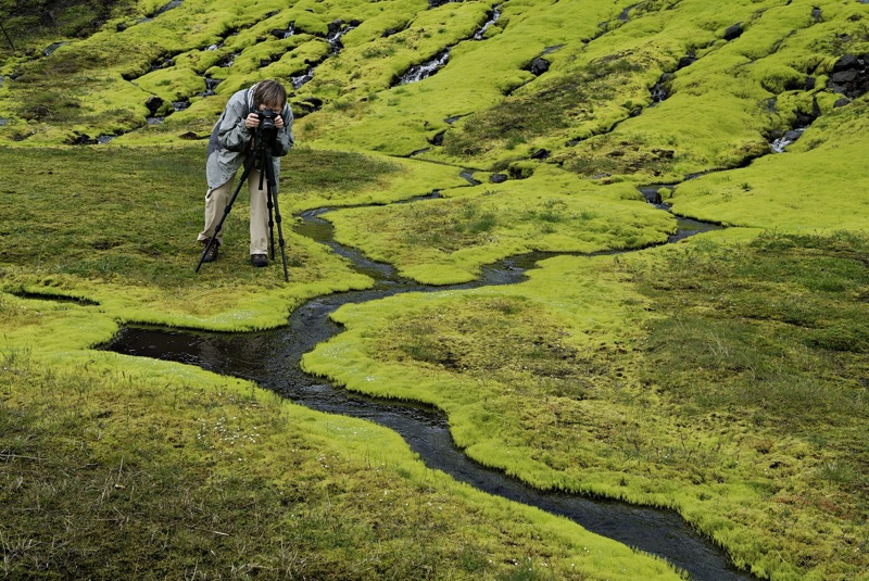 photographing-green-moss-iceland-photo-tours-photographic-workshop-photoagraphy-tours-iceland-photo-tours
