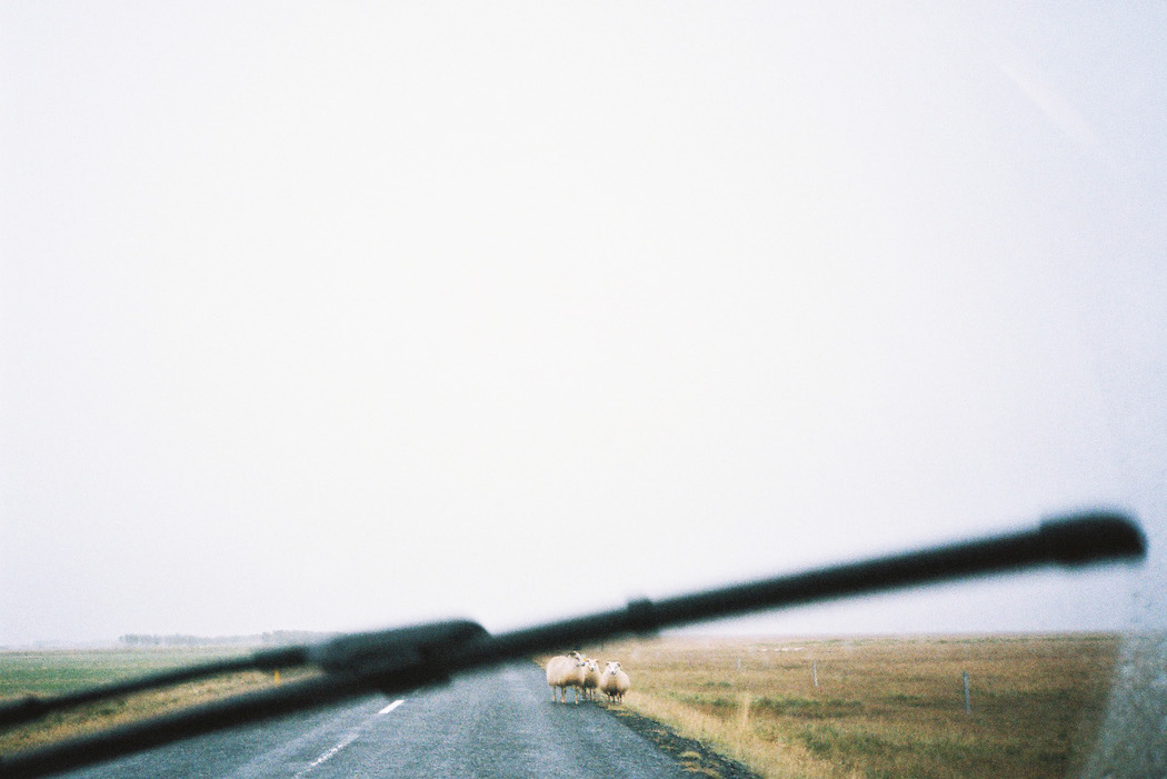 ontheroad_iceland_erell_06