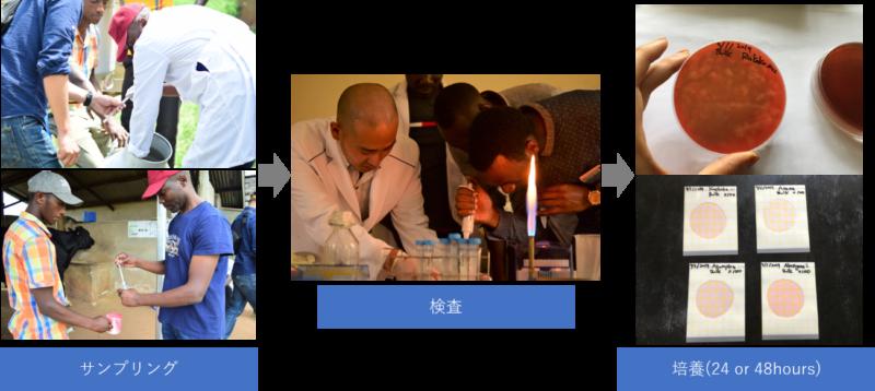 トビタテ!留学JAPAN日本代表プログラム(ウガンダ)活動報告 1月
