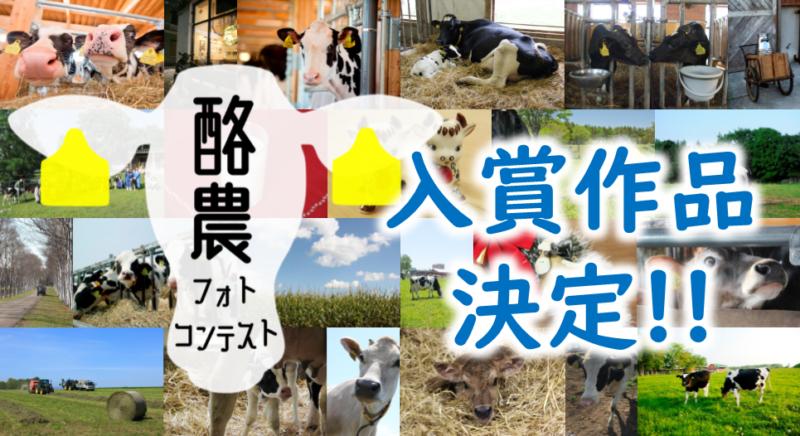 「酪農フォトコンテスト」の入賞作品が決定!!
