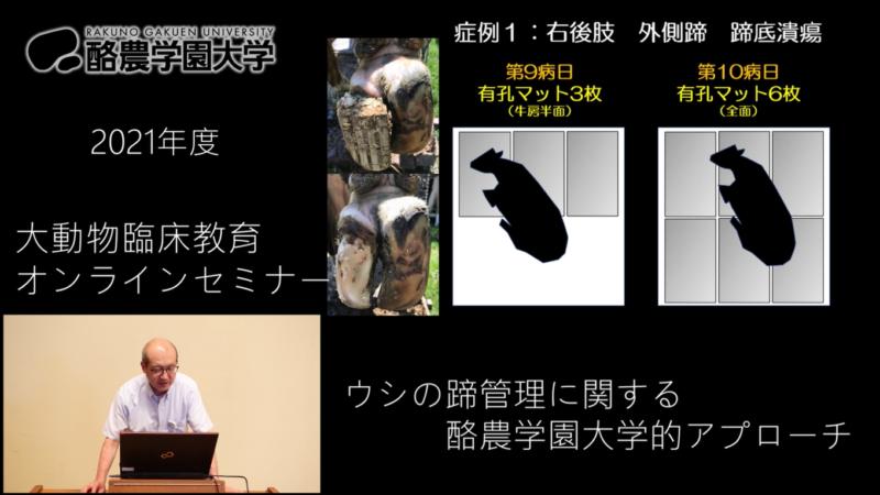第2回大動物臨床教育オンラインセミナーの開催と質問への回答について