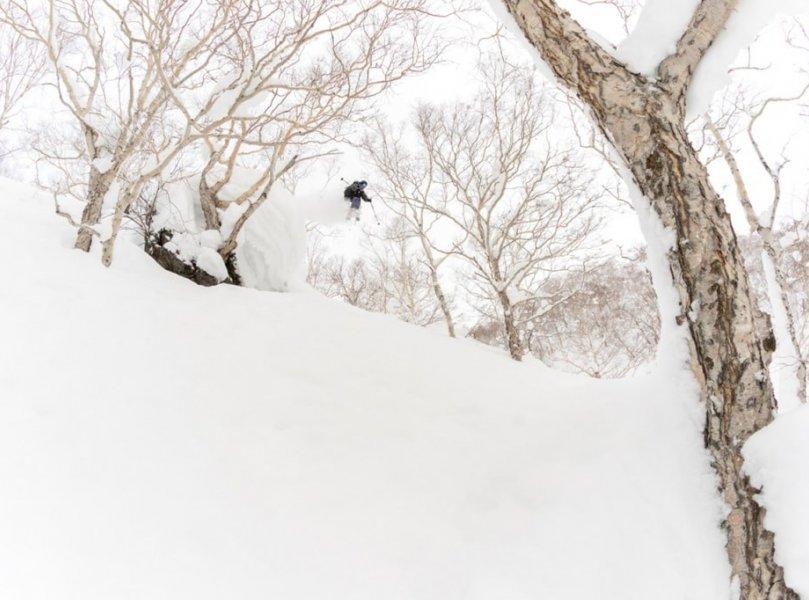 N Photo Niseko Camp 6