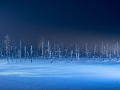AJ Winter1