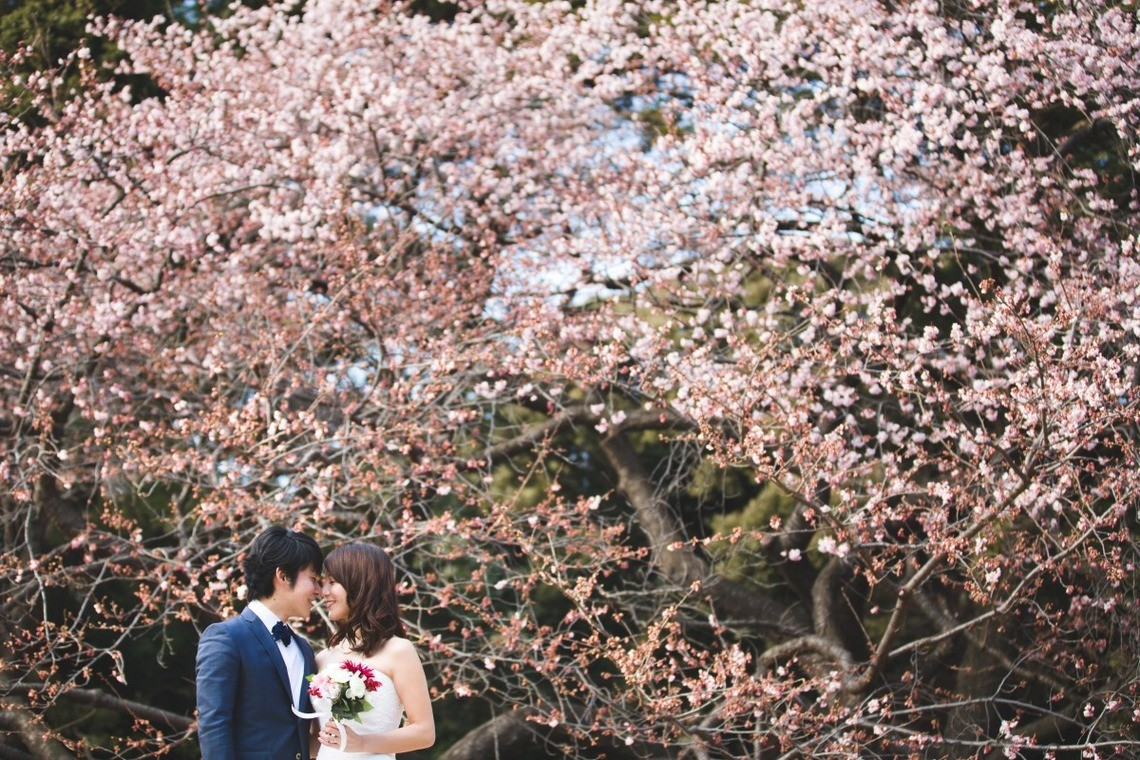 There are several different types of gardens in Shinjuku Gyoen National Park — Photo by WEDDING PICTURES