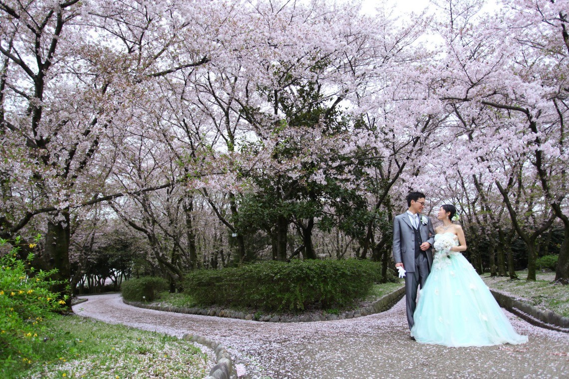 The Yamazakigawa riverside has more than 100 cherry blossoms — Photo by WEDDING AVENUE