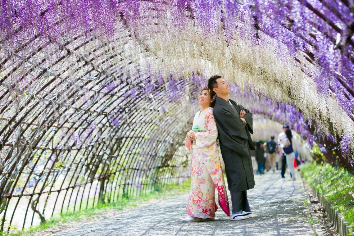Among the wisteria in Fukuoka — Photo by Feel So High! Kenichi Morinaga photography