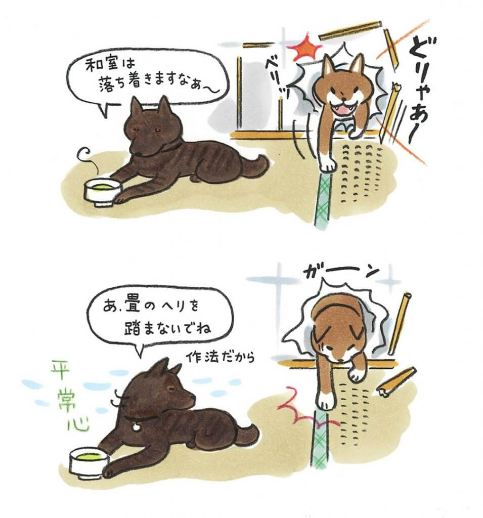 愛犬ジュウザのびっくり事件簿 | 影山直美|柴犬VS甲斐犬 | Fanimal(ファニマル)