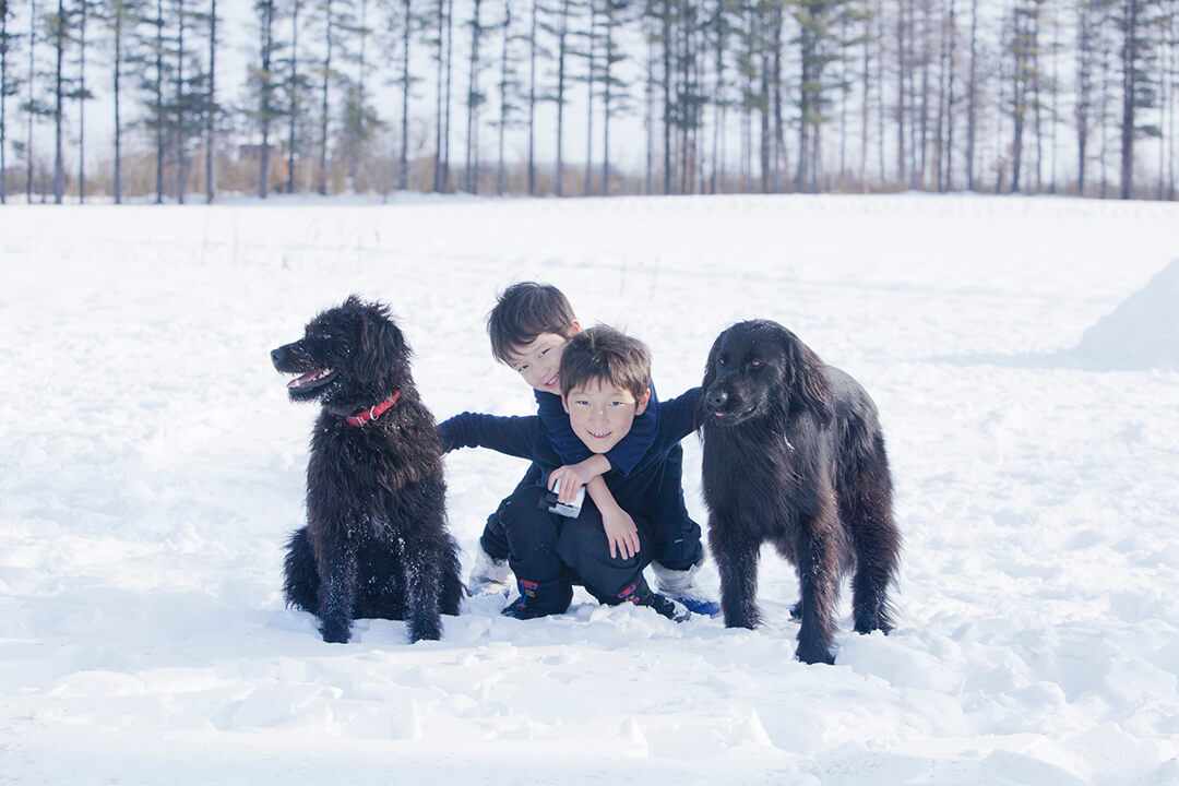 小さな兄弟と犬たち | Fanimal(ファニマル)