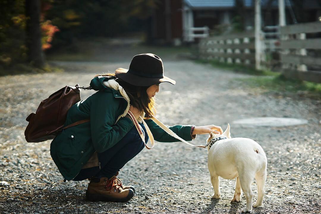 フレンチブルドッグを撫でる女性 | Fanimal(ファニマル)