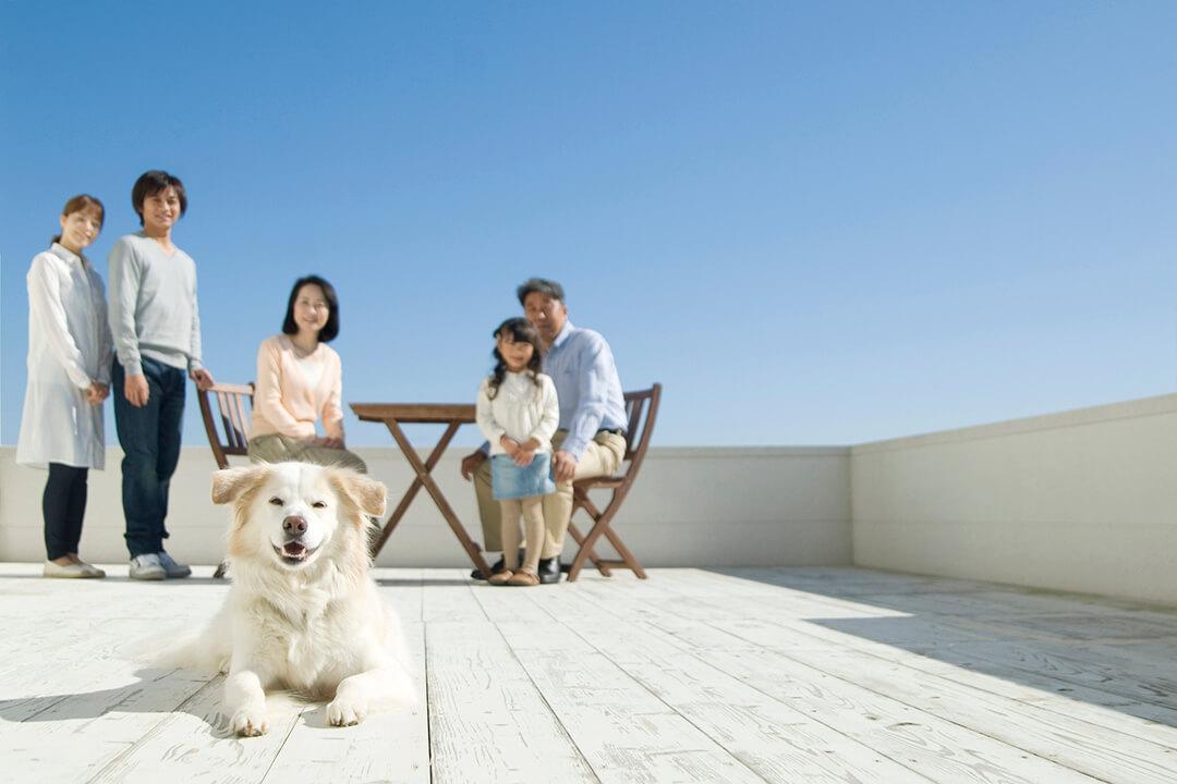3世代家族と犬 | Fanimal(ファニマル)