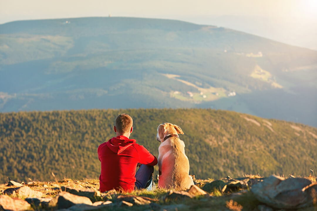 肩を並べて座る男性と犬 | Fanimal(ファニマル)
