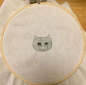 猫縫いのsurasuraさん1 | Fanimal(ファニマル)