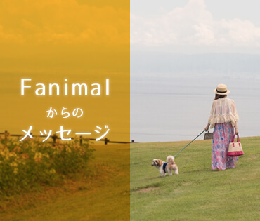 Fanimalからのメッセージ