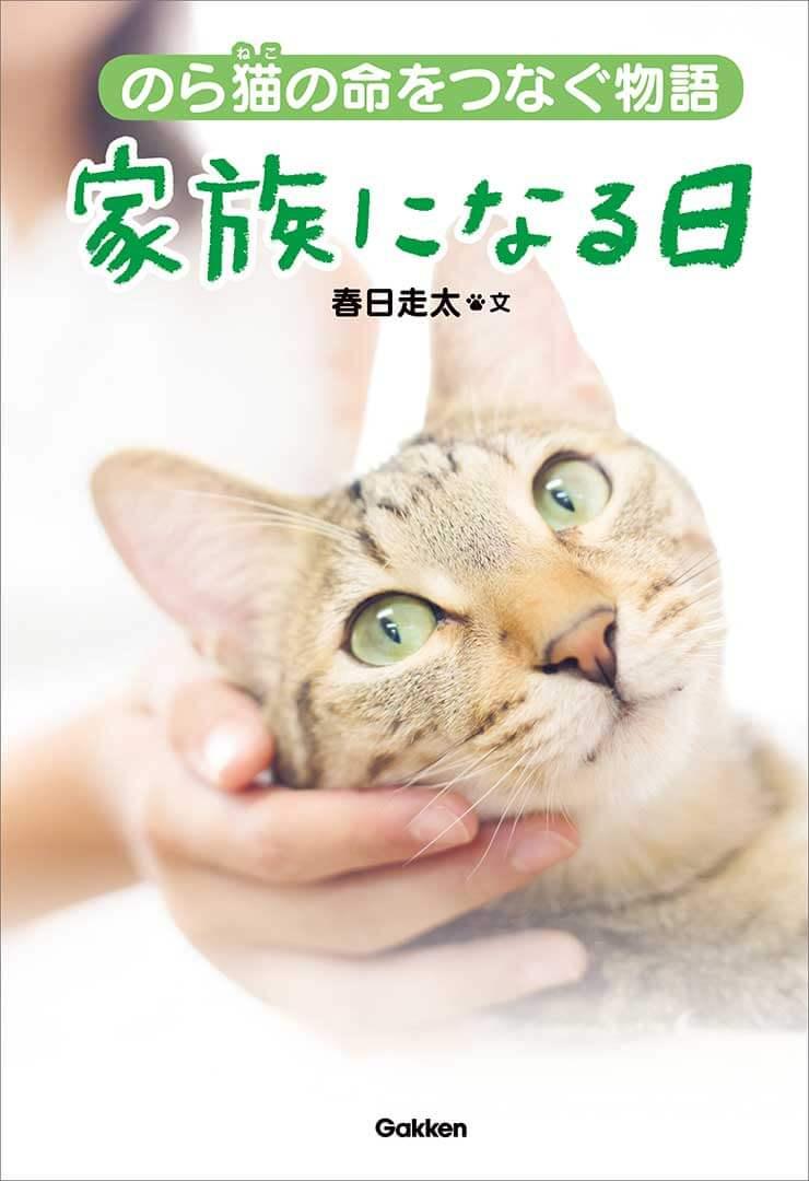 のら猫の命をつなぐ物語 | 本表紙 | Fanimal(ファニマル)
