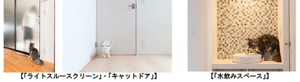 にゃんこと暮らすための家3 | Fanimal(ファニマル)