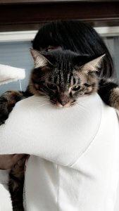 家族の抱っこで甘えるトム | Fanimal(ファニマル)