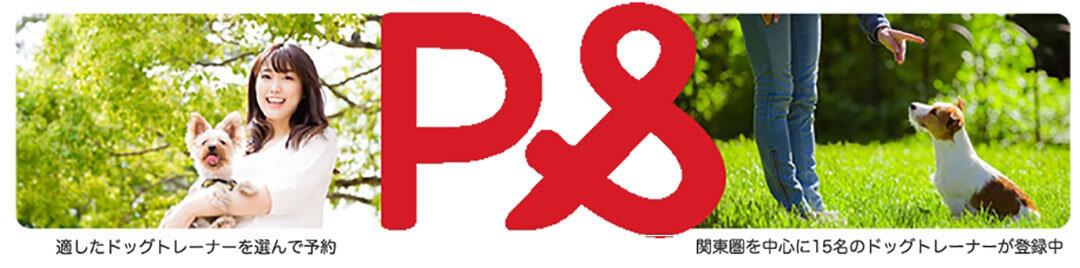 ワンちゃんの飼い主とドッグトレーナーをつなぐマッチングサイト「PAND PAND」をリリース! | Fanimal(ファニマル)