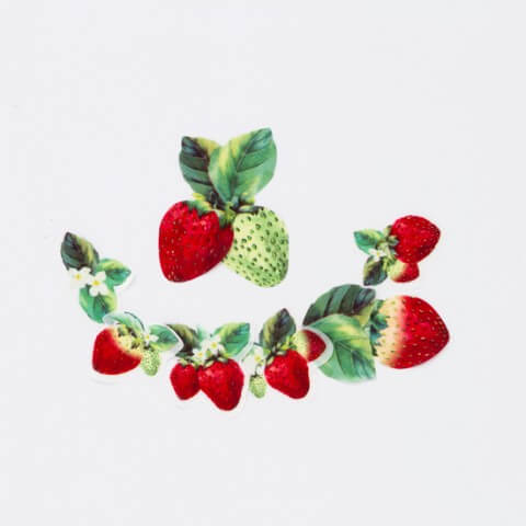 苺のマスキングテープ | Fanimal(ファニマル)