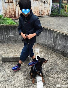 犬と暮らすということvol2-3 | Fanimal(ファニマル)