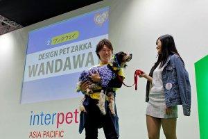 保護犬のファッションショー1 | Fanimal(ファニマル)