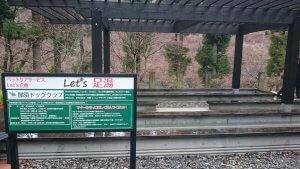 那須の森のサルーキ愛寿の乳がん回復温泉セラピー1 | Fanimal(ファニマル)