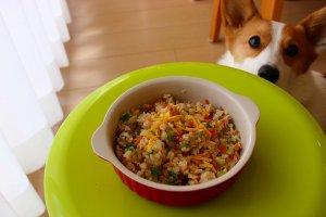 初心者から始める犬の手作りご飯 Vol.1-5 | Fanimal(ファニマル)