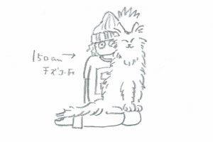 メインクーンの性格について知ろう【後編】イラスト | Fanimal(ファニマル)