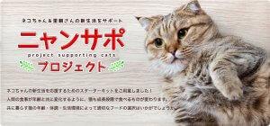 ネコちゃん&里親さんの新生活をサポートする『ニャンサポ』プロジェクトを開始 | Fanimal(ファニマル)