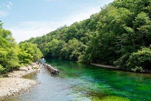 愛犬と川遊びができる関東の新穴場スポット5選2 | Fanimal(ファニマル)