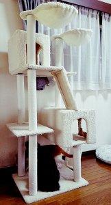 白いキャットタワー