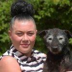 6年前に盗まれた犬が飼い主と奇跡の再会!