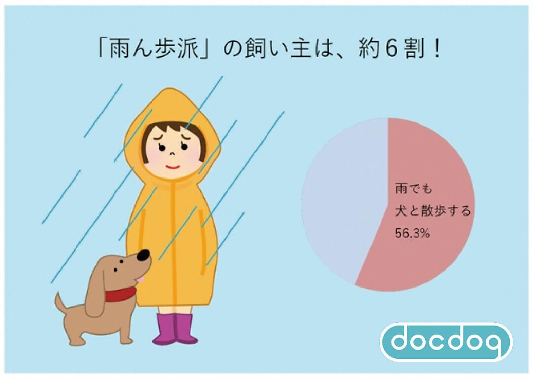 雨でもお散歩する「雨ん歩」派は6割!