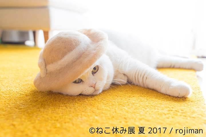 ねこ休み展・rojiman