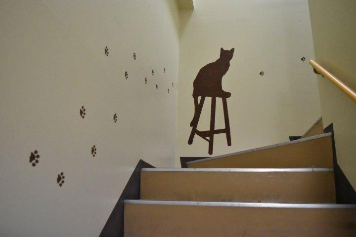 猫カフェ きたねこ家