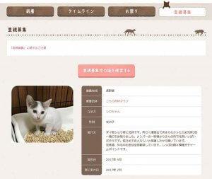 プレスリリース フェリシモ猫部「猫部トーク」