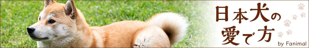 日本犬の愛で方タイトル