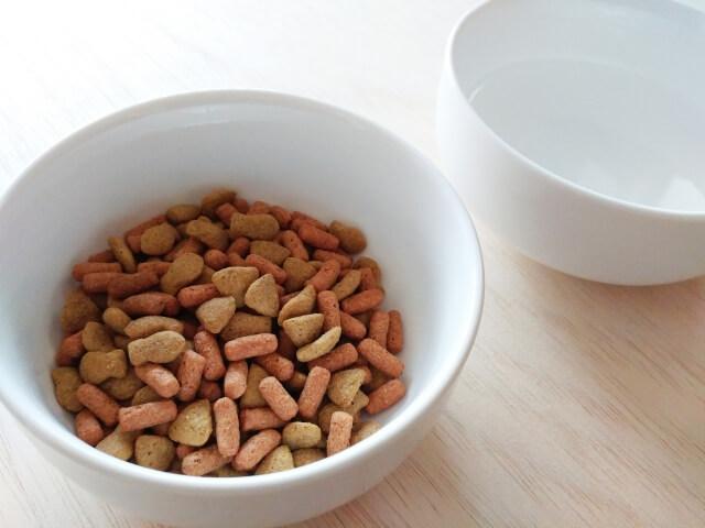 猫 総合栄養食