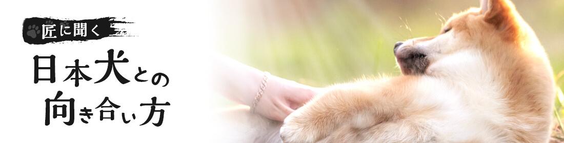 匠に聞く 日本犬との向き合い方